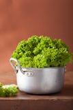 Fresh lettuce leaves in casserole Royalty Free Stock Photo