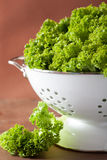 Fresh lettuce leaves in colander Stock Photo