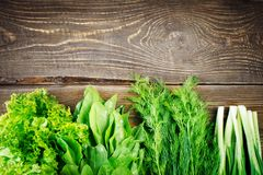 Fresh lettuce leaves, onions and fennel on a wooden background. Fresh lettuce leaves, onions and fennel on a wooden background Stock Images