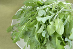 Fresh lettuce Stock Images