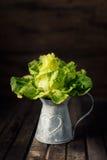 Fresh Lettuce plant in metal basket  on brown wooden background Stock Image