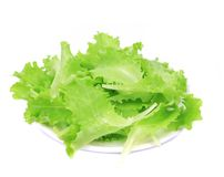 Fresh lettuce on plate close up. Royalty Free Stock Images