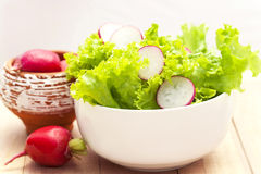 Fresh lettuce and radishes Stock Image