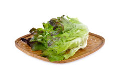 Fresh lettuce or red oakleaf in bamboo basket and on white backg Stock Photography