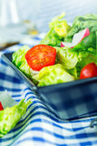 Fresh lettuce salad with cherry tomatoes radish and carafe with olive oil on wooden table. Stock Photography