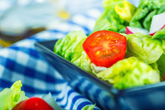 Fresh lettuce salad with cherry tomatoes radish and carafe with olive oil on wooden table. Several ingredients of Mediterranean cuisine Stock Image