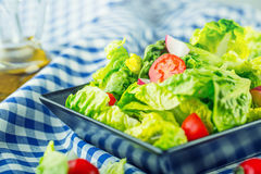 Fresh lettuce salad with cherry tomatoes radish and carafe with olive oil on wooden table. Stock Image