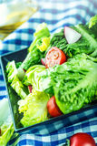Fresh lettuce salad with cherry tomatoes radish and carafe with olive oil on wooden table. Stock Photos