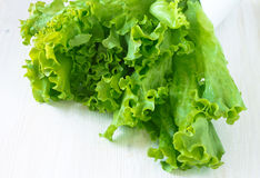 Fresh lettuce salad leaves bunch Royalty Free Stock Photo
