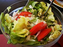 Fresh lettuce salad with onion, tomato and olive oil stock image