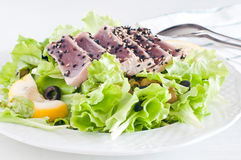 Fresh lettuce salad with pan-seared red tuna Royalty Free Stock Image