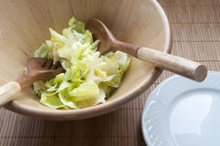 Fresh lettuce salad Royalty Free Stock Photos