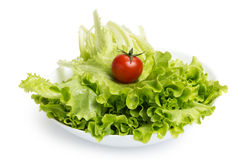 Fresh lettuce salad with tomato in bowl Royalty Free Stock Photo
