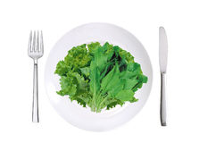 Fresh lettuce and sorrel on white plate, fork and knife isolated Royalty Free Stock Photography
