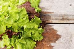 Fresh lettuce. Still life of lettuce in the conventional wooden boards Stock Photography