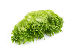 Fresh lettuce texture Royalty Free Stock Images