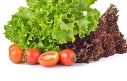 Fresh lettuce and tomato on white background. Fresh lettuce and tomato on a white background royalty free stock image