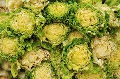 Fresh lettuce vegestatble Stock Photo
