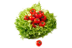 Fresh lettuces salad with fresh  tomatoes Stock Photo