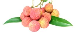 Fresh Lichi. Over white background Stock Photography