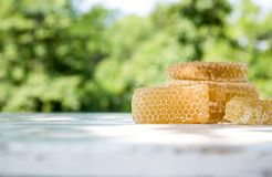 Fresh light bee honey in pieces of honeycombs on a white wooden rustic table with blur background. Stock Photos