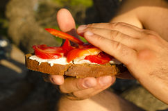 Fresh light sandwich with cheese tomato and pepper. Young man holding sandwich in his hands royalty free stock photography