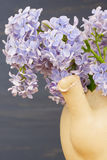 Fresh lilac flowers in the beige tea pot over blue background. Stock Photos
