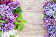 Fresh lilac flowers frame Stock Photos