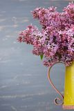Fresh lilac flowers in the metal yellow pitcher against blue background. Royalty Free Stock Images