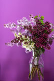 Fresh lilac flowers in a simple glass vase Stock Photos