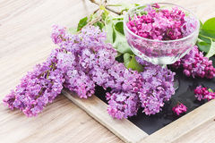 Fresh lilac flowers on table. Pile of fresh violet lilac flowers on wooden table Royalty Free Stock Photo