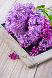 Fresh lilac flowers on table. Fresh purple lilac flowers on wooden table Royalty Free Stock Images
