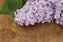 Fresh lilac flowers on table Stock Photo