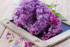 Fresh lilac flowers on table. Fresh violet lilac flowers on wooden table Royalty Free Stock Photos