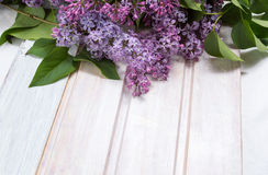 Fresh lilac flowers on a wooden table Stock Image