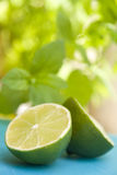 Fresh lime. S with selective focus Stock Photo