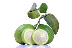 Fresh lime Stock Photos
