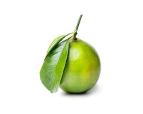 Fresh lime. Royalty Free Stock Photo