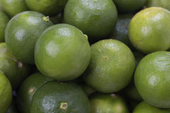 Fresh lime Royalty Free Stock Photo