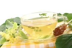 Fresh lime blossom tea Stock Photos