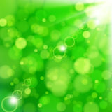 Fresh lime blur background with sunlight spots. Illustration for your design Royalty Free Stock Images