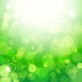 Fresh lime blur background with sunlight spots. Illustration for your design Stock Photo