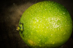 Fresh lime close up with drops of water on woden background. Stock Photo