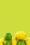 Fresh lime fruit and some lemons Stock Image