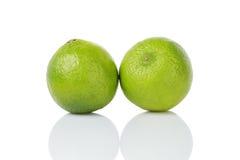 Fresh lime fruits Isolated on white Royalty Free Stock Image