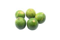 Fresh lime fruits. Fresh limes on isolated background royalty free stock photo