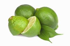 Fresh lime isolated Royalty Free Stock Image