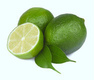 Fresh lime isolated Stock Photography