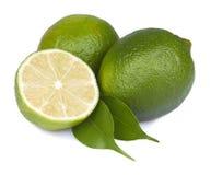 Fresh lime isolated Stock Photos