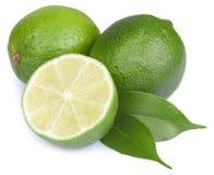 Fresh lime isolated Stock Image